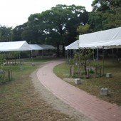 cia2011 jyunbi 022